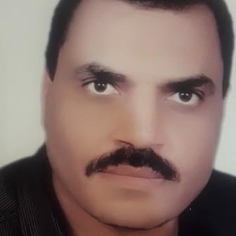 دكتور طلعت محمود ابو المجد